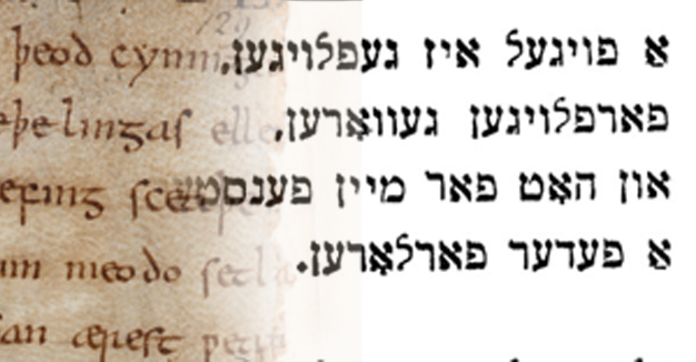 """די אַלט־ענגלישע פּאָעמע """"בעאָוווּלף"""" און מאַני־לייבס לידער; ביידע זענען פֿול מיט אַליטעראַציעס"""