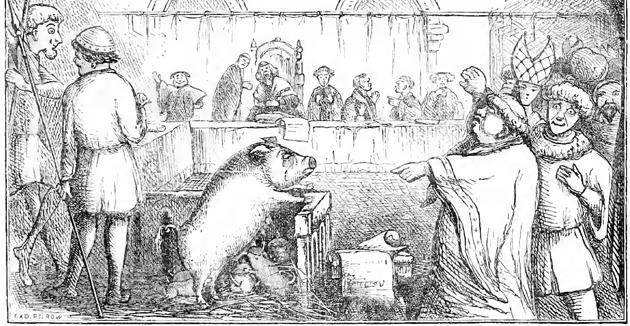 """אַן אילוסטראַציע פֿונעם מישפּט איבער אַ משפּחה חזירים אין ראָבערט טשיימבערס """"בוך פֿון טעג"""""""
